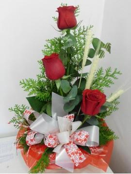 Mimo de Rosas 1