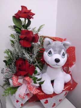 Rosas e Husky
